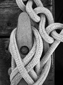 Dock Lines 13  com