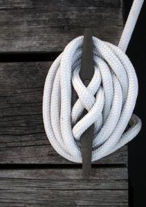 Dock Lines 5  com