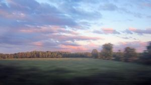 Pics from a train window 2