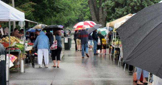 Port Austin Market in the Rain